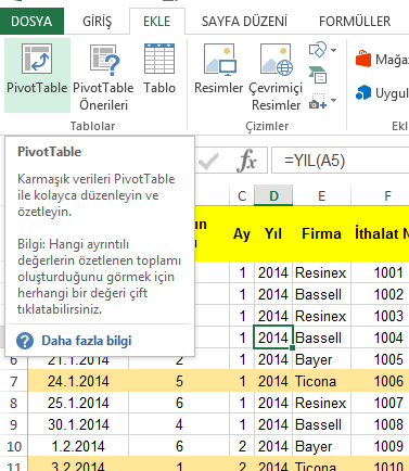 etkinbilgi_ozet_tablo(pivottable)_1