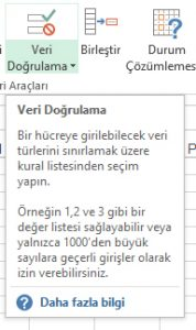 etkinbilgi_veri_dogrulama_data_validation_1