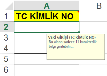 etkinbilgi_veri_dogrulama_data_validation_5
